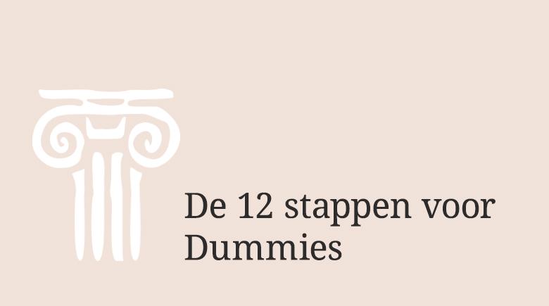 12 Stappen voor Dummies